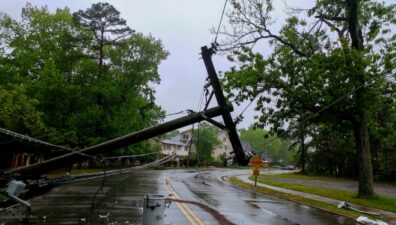 A transformer lies on a electric poles and a tree laying across power lines over a road after Hurricane